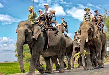 Ghé thăm Buôn Đôn để trải nghiệm cưỡi voi