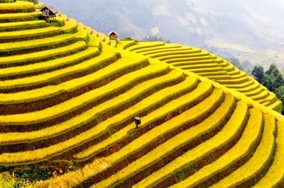 Những địa điểm du lịch quanh Hà Nội