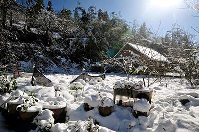 Háo hức chờ đón lễ hội Tuyết ở Sapa