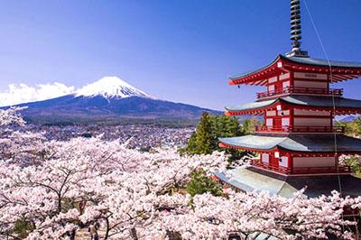 Những trải nghiệm không thể bỏ qua khi đi du lịch Nhật Bản