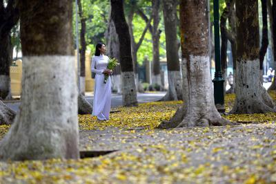 Top 6 những địa điểm du lịch không thể bỏ qua tại Hà Nội