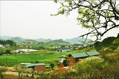 V house Mộc Châu