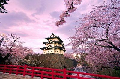 Du lịch khám phá Nhật Bản mùa lá đỏ | 6 ngày 5 đêm