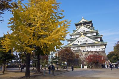 Thăm quan du lịch Nhật Bản: HCM - Tokyo - Hakone - Fuji - Yamanashi | 4 ngày 3 đêm