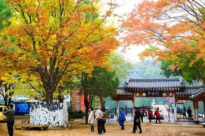 Chương trình tour du lịch Seoul Hàn Quốc | 5 ngày 4 đêm