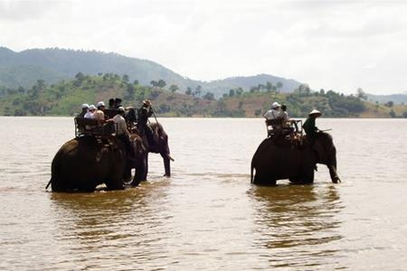 Cưỡi voi Hồ Lak