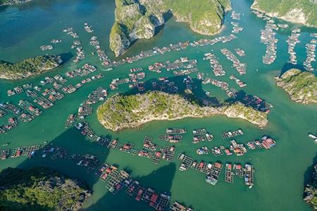 Đảo Cát Bà từ trên cao