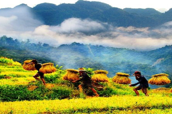 Du lịch Mai Châu - Pù Luông